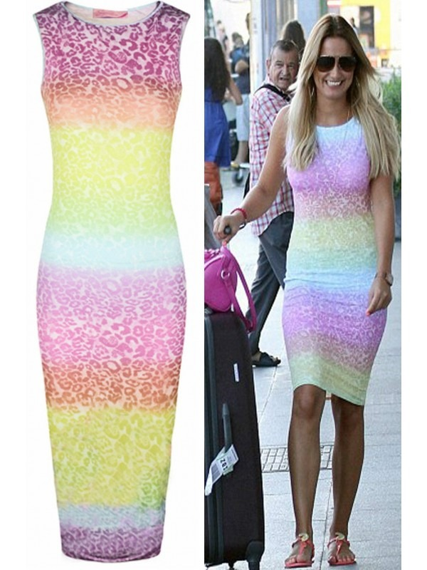 Celebrity Sam Inspired Leopard Print Multi Colour Midi Dress