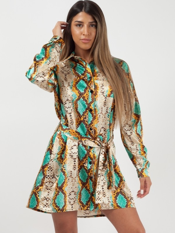 Snake Print Satin Shirt Dress
